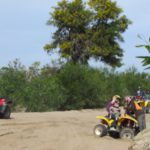 Quad biking and picnic in flowers  (1)