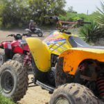Quad biking and picnic in flowers  (13)