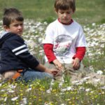 Quad biking and picnic in flowers  (17)