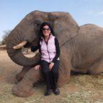 elephant-encounter-001