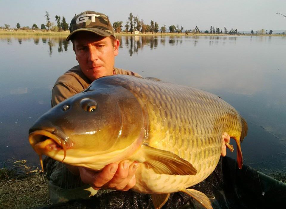 monster carp safari