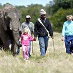 elephant-adventure-001